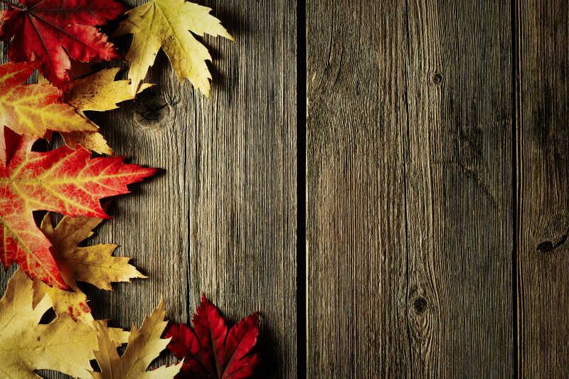 木纹理桌上的红色和黄色的枫叶