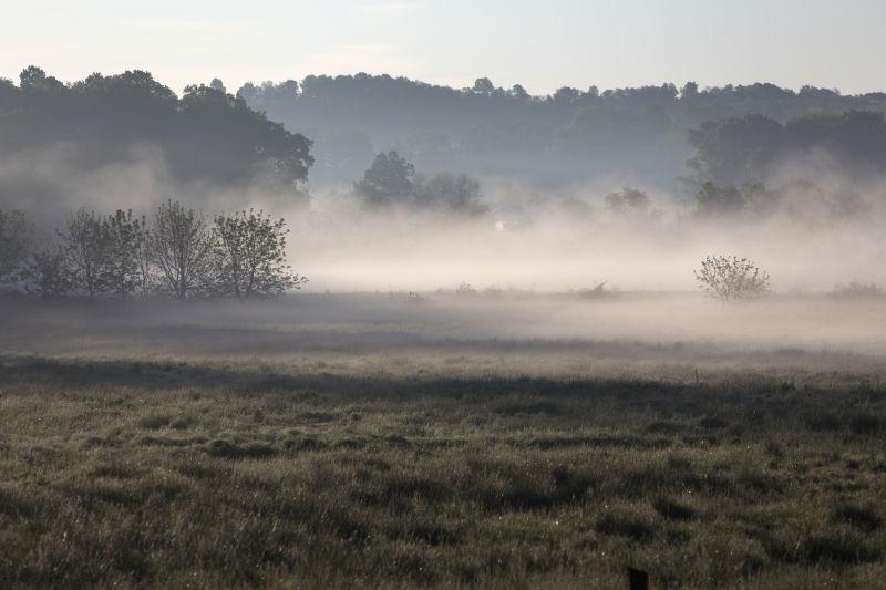 充满雾气的俄亥俄州乡村