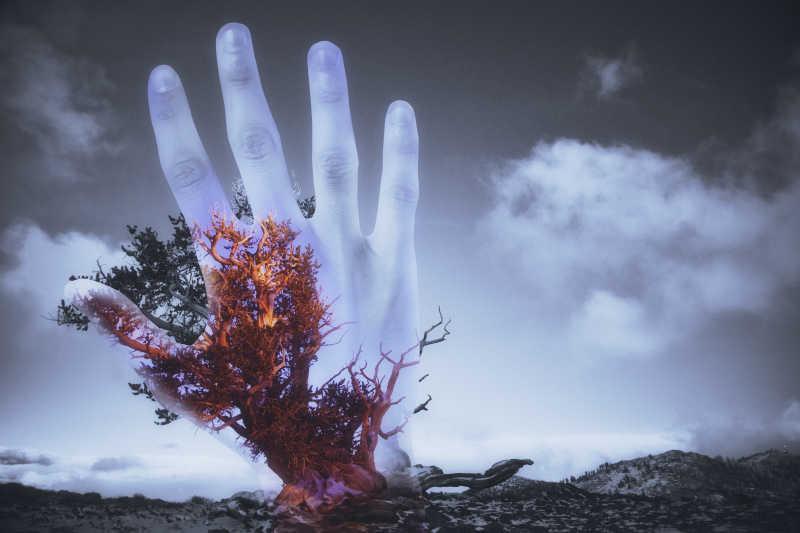有云的天空下手掌与树木的双重曝光