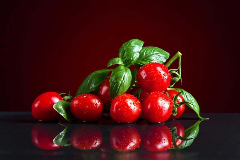 新鲜好看的红色小番茄