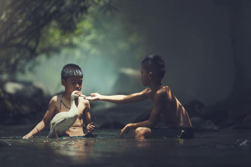两个男孩在河里玩着白鸭子