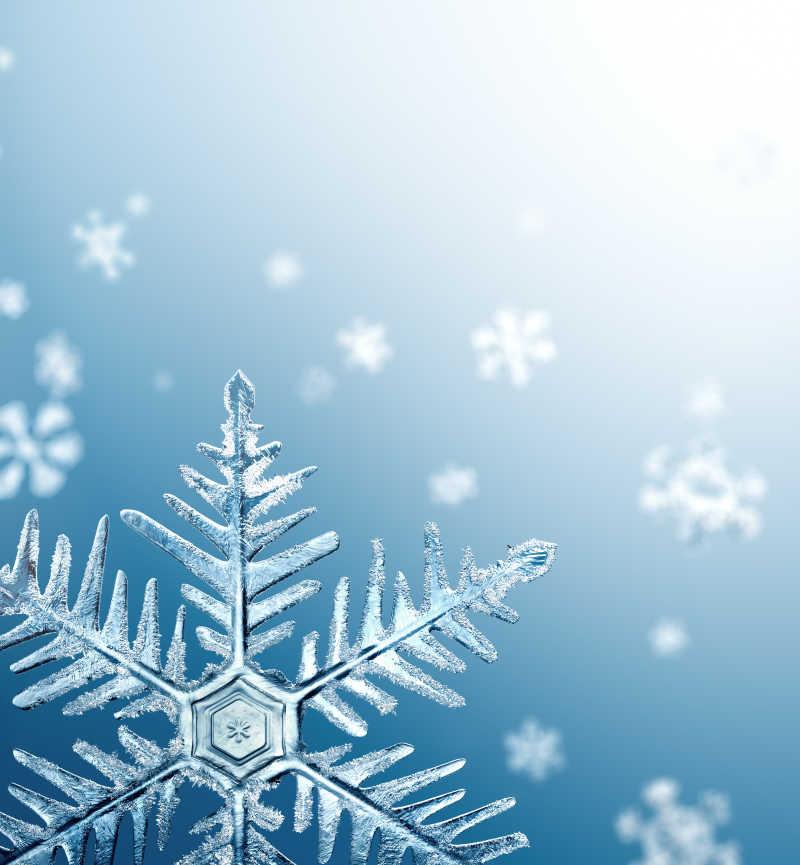 圣诞节雪花元素背景