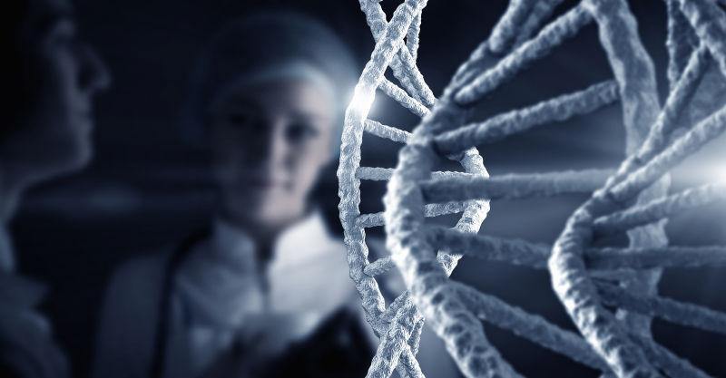 生物科学家前的基因模型