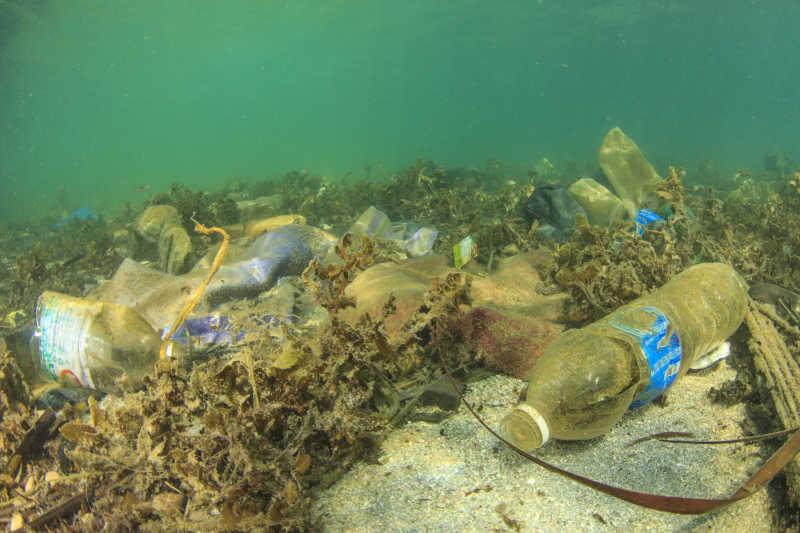 海底的各种塑料垃圾