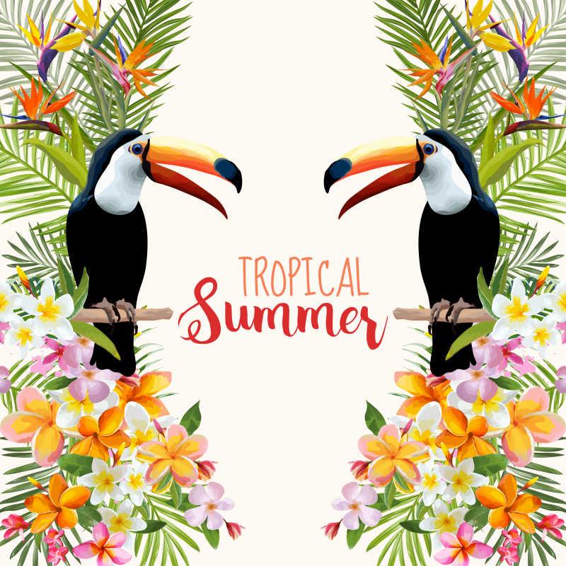 热带巨嘴鸟和花朵对称矢量插图背景