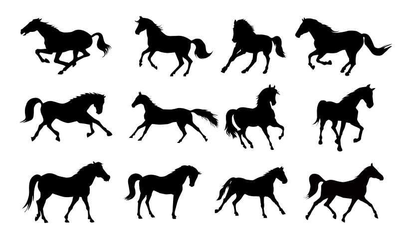 不同姿态的马矢量剪影