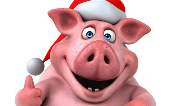 创意猪设计